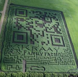 Corn Maze QR Code