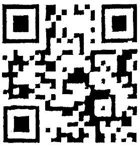 Kraay Family Corn Maze QR Code Analysis